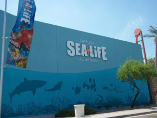 David sea life evaluation Arizona mills mall aquarium